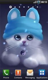 Yang The Cat