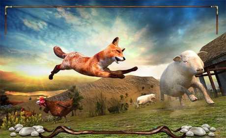Wild Fox Adventures 2016