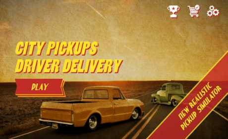 City Pickups Driver Delivery